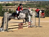 Horsewoman jumping obstacles
