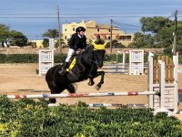 Show jumping with the horse