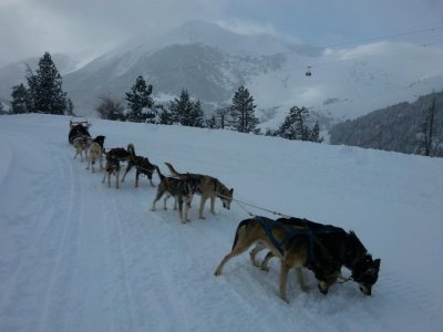 Andorra Mushing Ride 3.5km Adulti