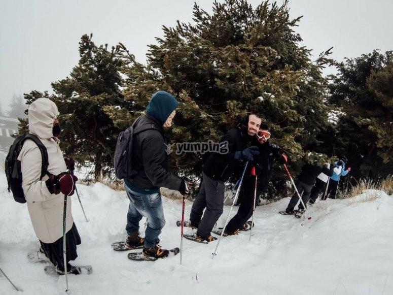 Grupo de raquetas de nieve en los bosques