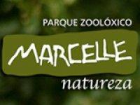 Marcelle Natureza