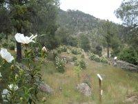 Naturaleza Valle del Alberche