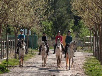 Clases de equitación en Nàquera 1 hora