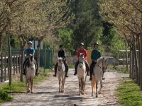 Equestrian Course in Náquera 1 hour