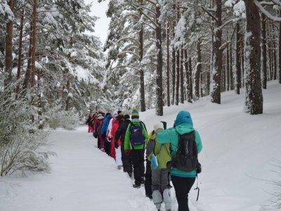 Raquetas de nieve ruta en Sierra de la Demanda