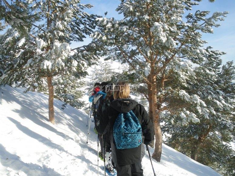 Grupo en los senderos nevados