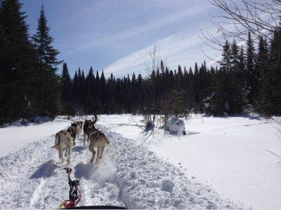 骑在Grau Roig的狗拉雪橇2公里