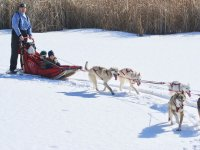 Dog Dragged Sled in Andorra Kids 2 km