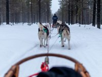 Mushing in Grau Roig Kids 3 km
