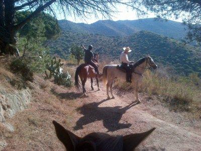 Ruta a caballo por la sierra de la Marina 2 horas