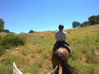 Disfruta del paseo a caballo