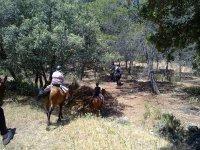 Horseback riding through the countryside