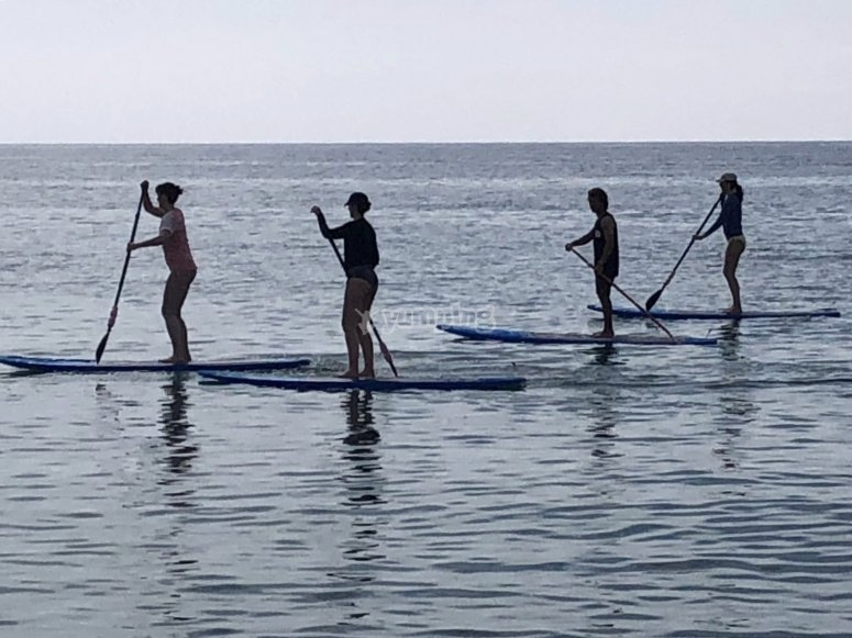 Group of 4 people doing paddle surf