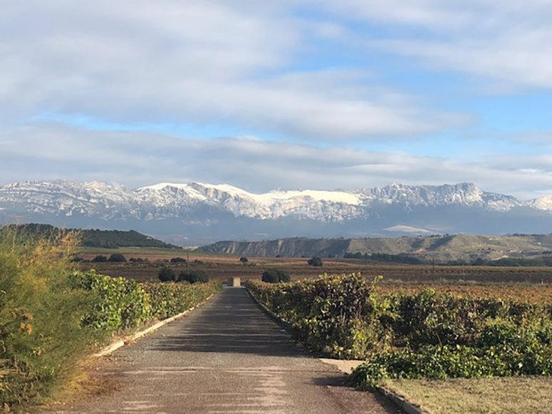 阿梅索拉的景色