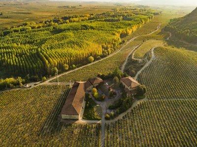 Visita privada a bodega centenaria en La Rioja