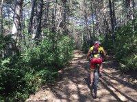Camino de montaña por los Pirineos