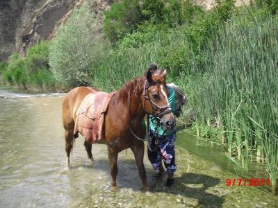 Ruta a caballo de 1hora y media Sierra de Guara