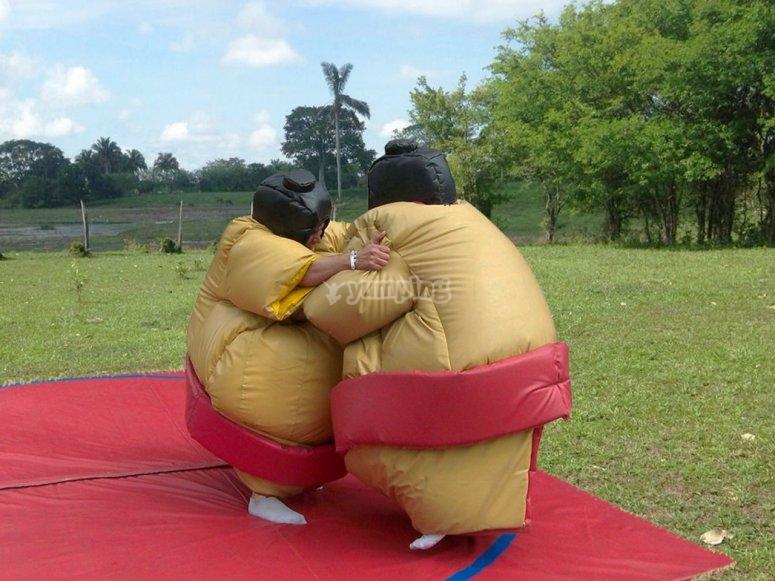 Lucha de sumos