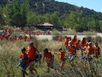 Campamento inglés en Brunete 15 días julio