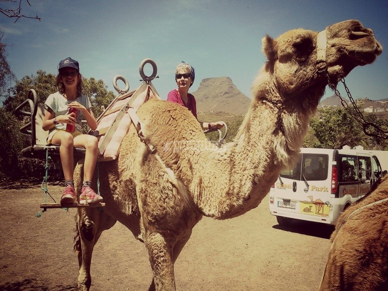 Grandmother and granddaugther on a camel