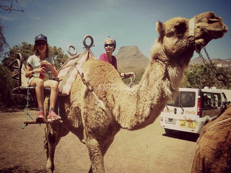 Abuela y nieta en camello