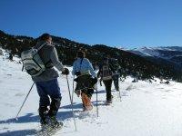 En fila con raquetas de nieve hacia el bosque