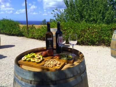 Wine route through Majorca with tasting