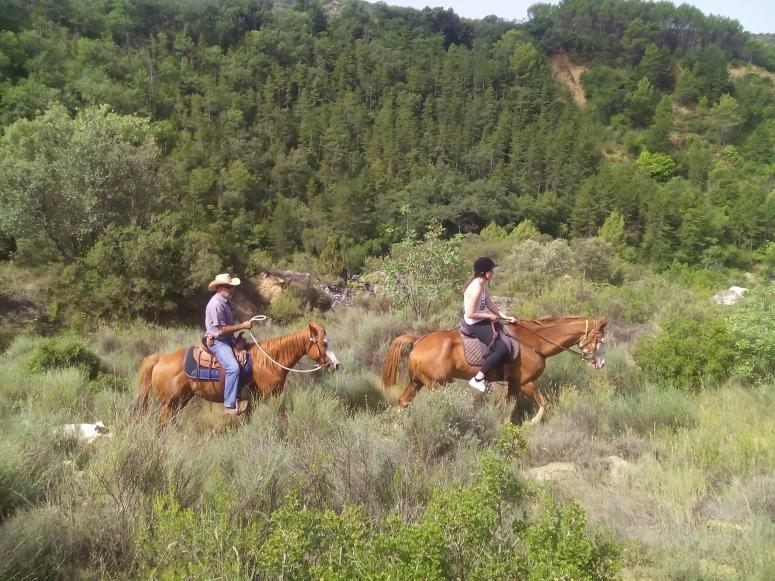 Realiza una excursion a caballo