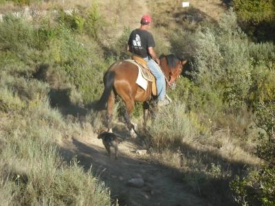 Ruta a caballo con vía ferrata Sierra de Guara