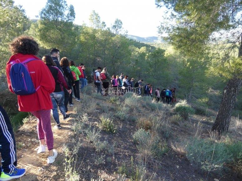 down the Murcian mountains
