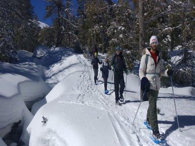 Travesía nocturna raquetas de nieve en La Cerdanya
