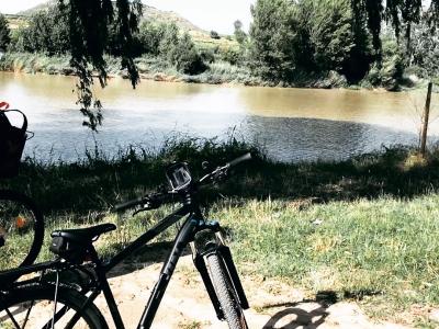 Alquiler de bicicleta día entero en Fuenmayor 11 h
