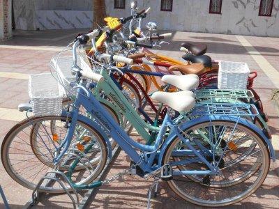 马斯帕洛马斯骑着老式自行车3小时