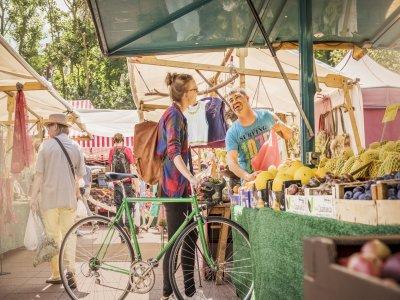 Percorso in bici attraverso Maspalomas e mercato 4 ore