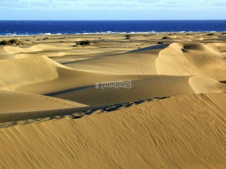 Dunas de Maspalomas en la isla de Gran Canarias