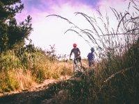 Alquiler de mountain bike en Maspalomas 6 horas