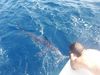 8 h Fish Trolling expedition in Mazagón