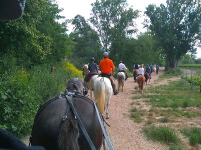 Horseback riding couples La Grajera reservoir 2h