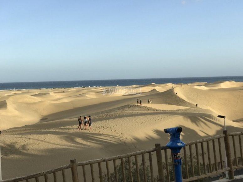 加那利群岛的Maspalomas沙丘