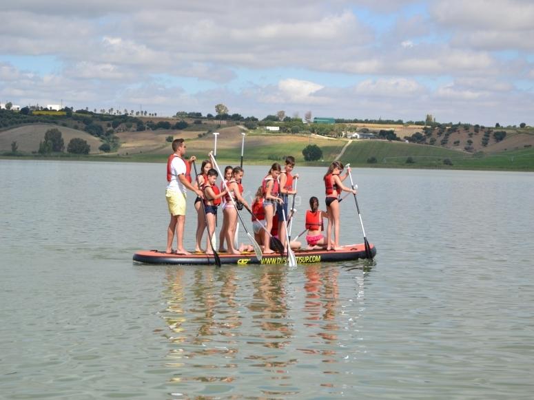 团体冲浪板