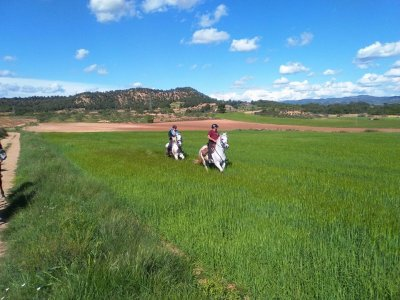 Horse riding tour 1h for couples in Rodonyá