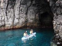 Safari  Delfines y Tortugas en Kayak Tenerife Sur