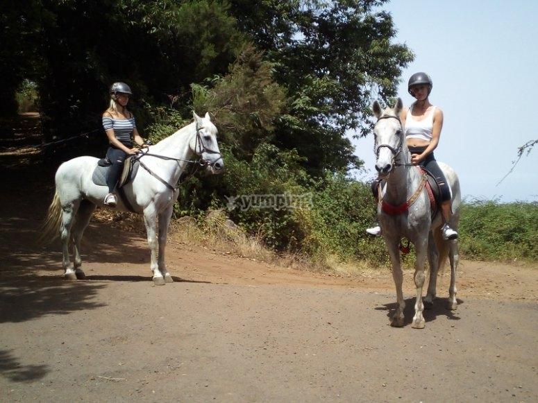 Pareja montando a caballo en Tenerife