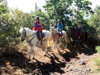 Pareja a caballo en Tenerife