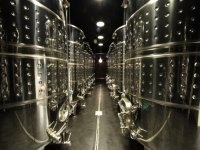 Discover how wine is made