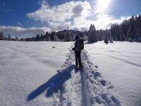 chica haciendo raquetas de nieve