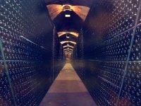 酒厂Vinedos巴塞罗那