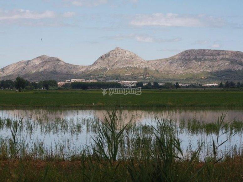 El paisaje del Bajo Ampurdan