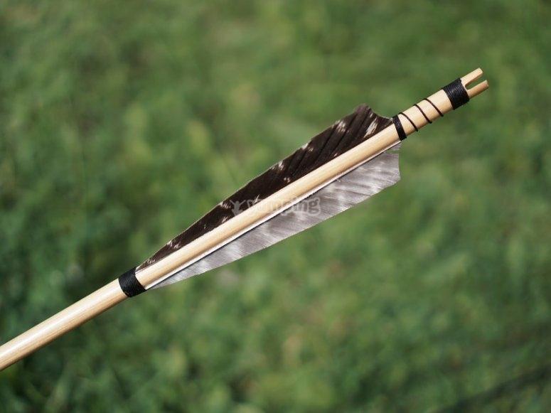 Flechas clavada en la diana