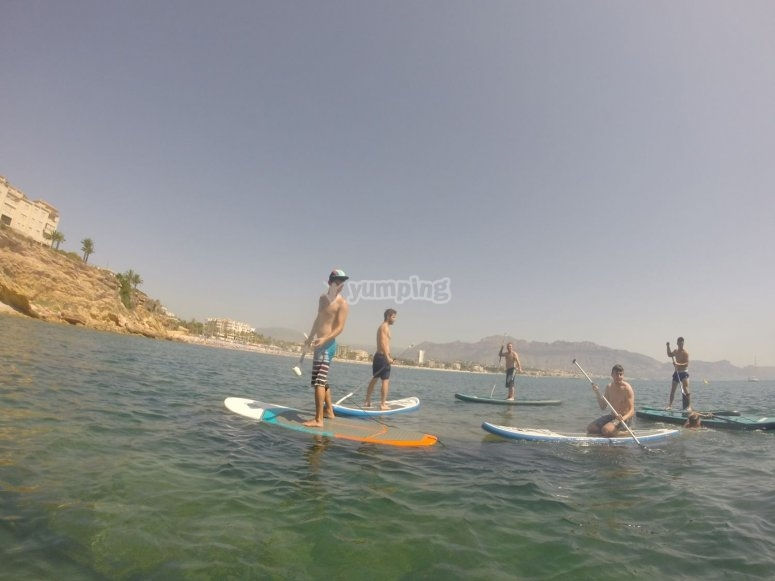 Group of friends doing sup